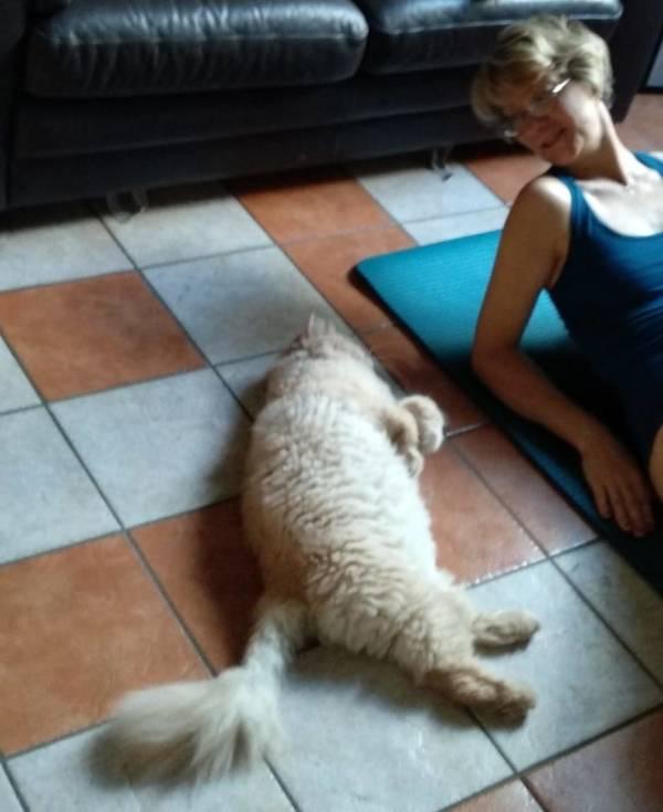 Panico, yoga e respiro