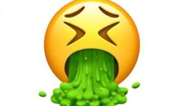 Il disgusto